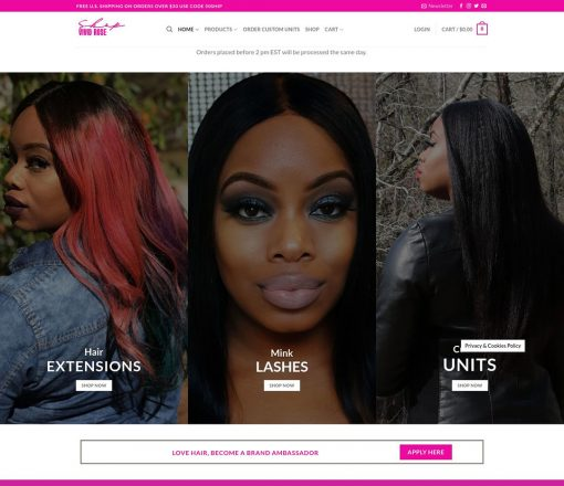 $399-website-special